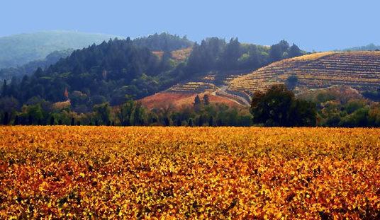 Headlsburg CA Homes For Sale & Real Estate