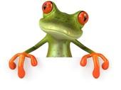 Selling Indy Metro frog logo