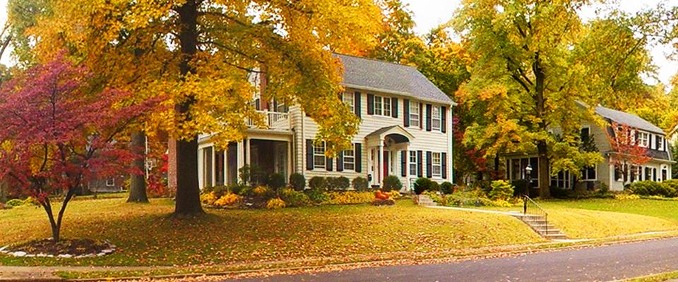 Saint Louis Real Estate Saint Louis Homes for Sale