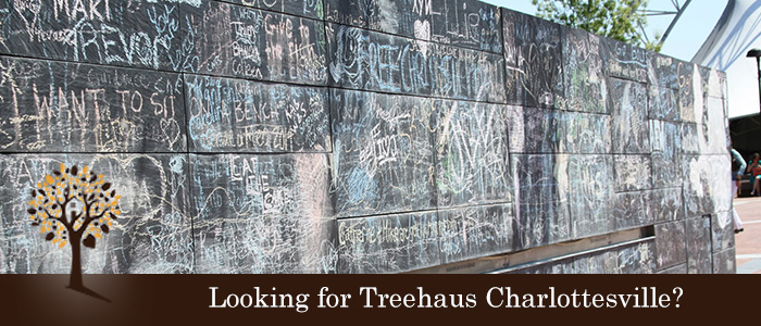 Treehaus - Charlottesville