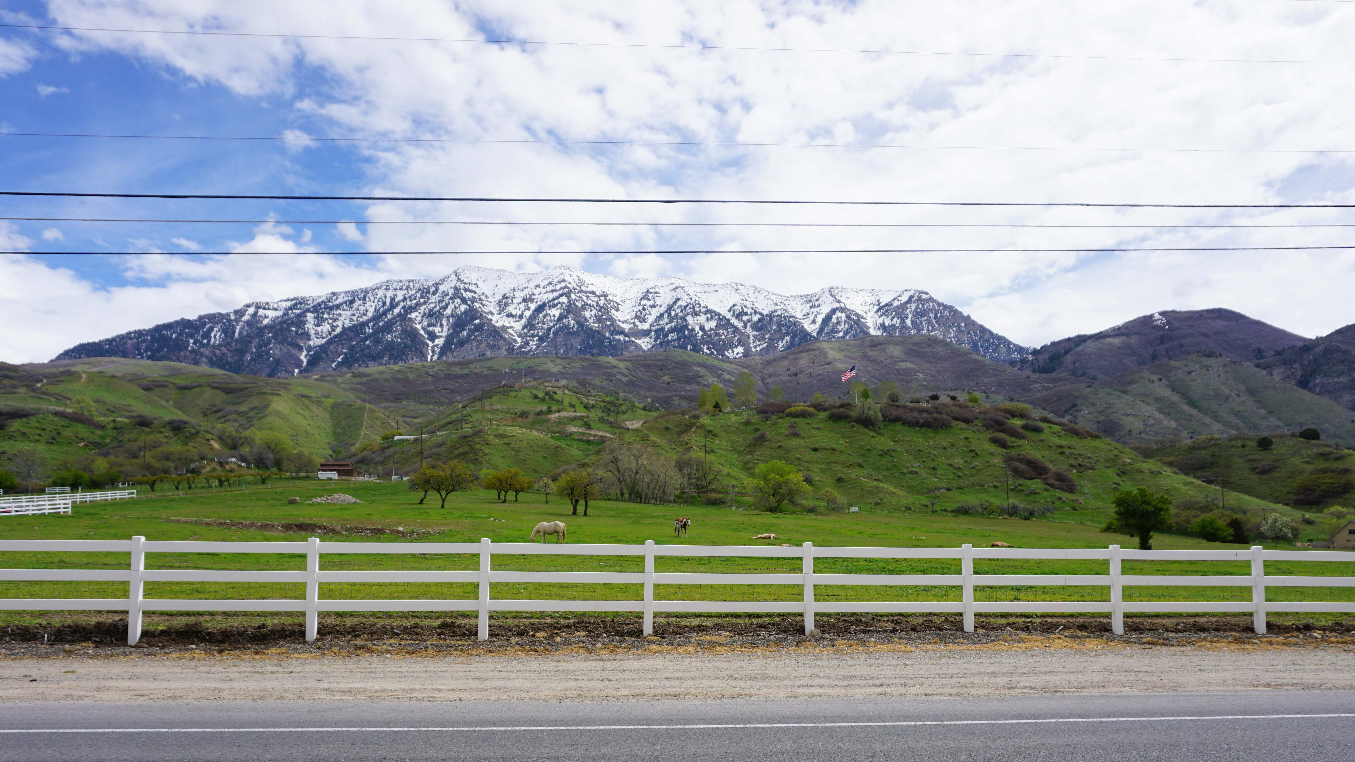 homes for sale with horse property in lindon utah