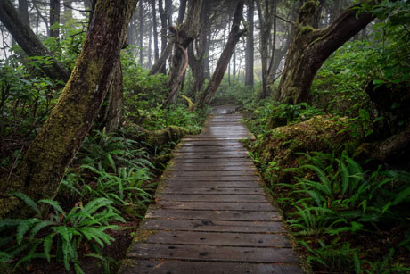 Hiking on trails in and around Parksville & Qualicum Beach, BC