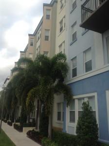 Sole Fort Lauderdale