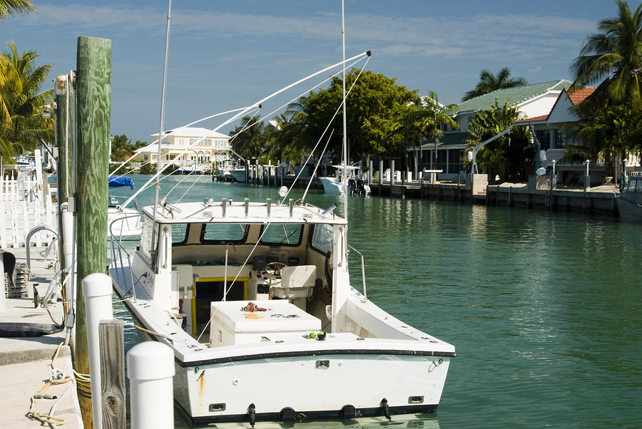 Search Palm Coast Intracoastal homes and Palm Coast Intracoastal real estate.