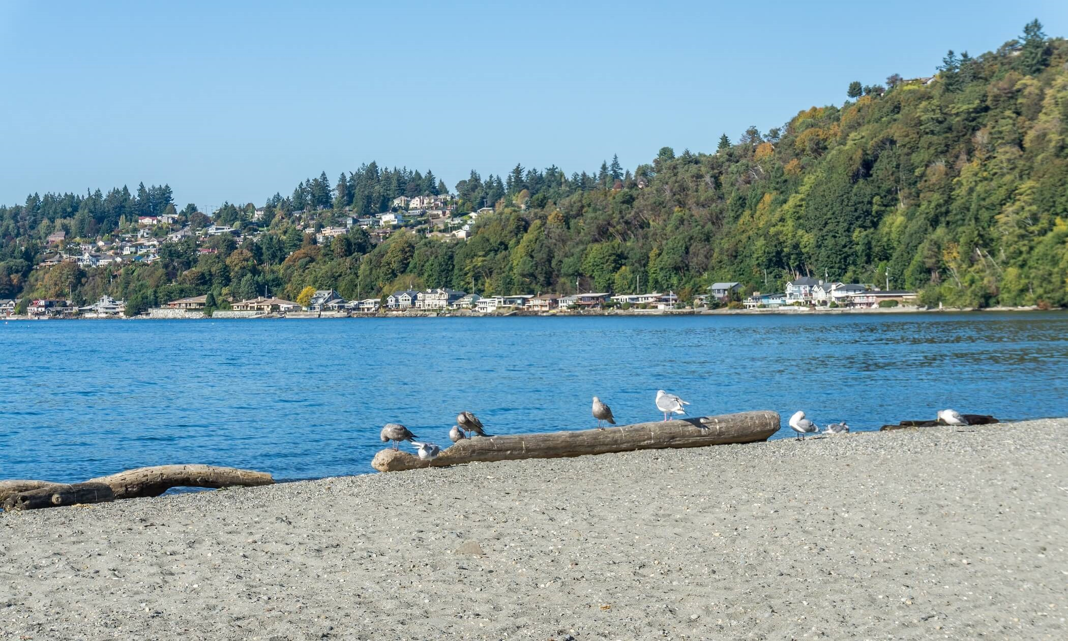 Puget Sound Waterfront Homes - Puget Sound, WA Real Estate