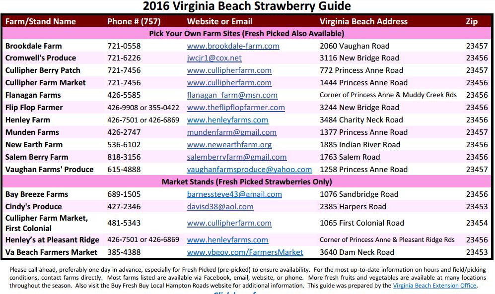 strawberry picking in virginia beach
