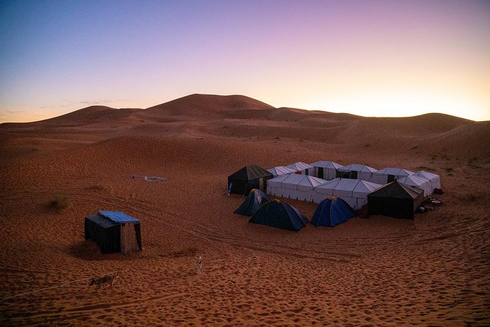 Sahara Desert Challenge For Shelter 2019