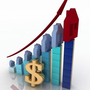 Market Report Search