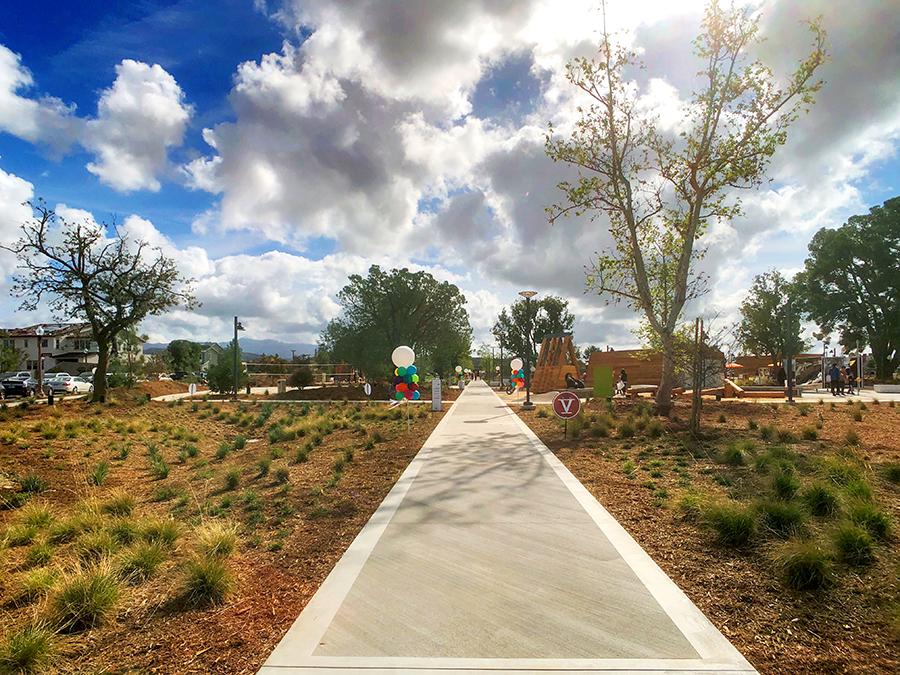 Cadence Park