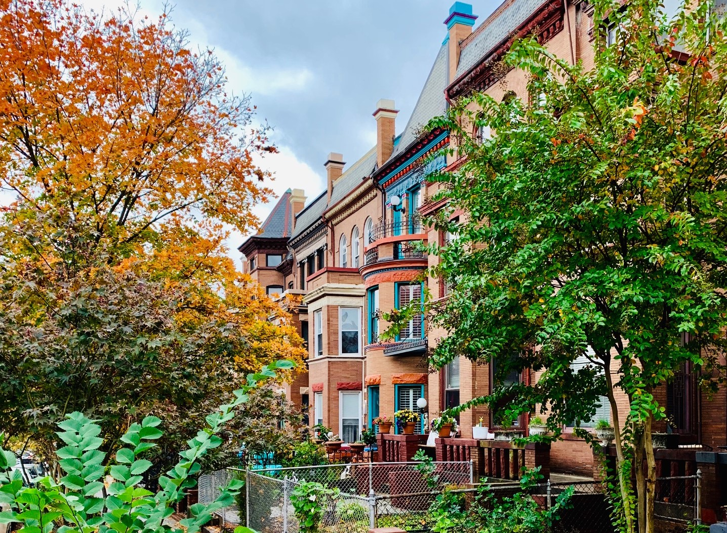 Washington, DC Historic Homes For Sale. 1st St in Bloomingdale. Artyom Shmatko Luxury Real Estate Agent