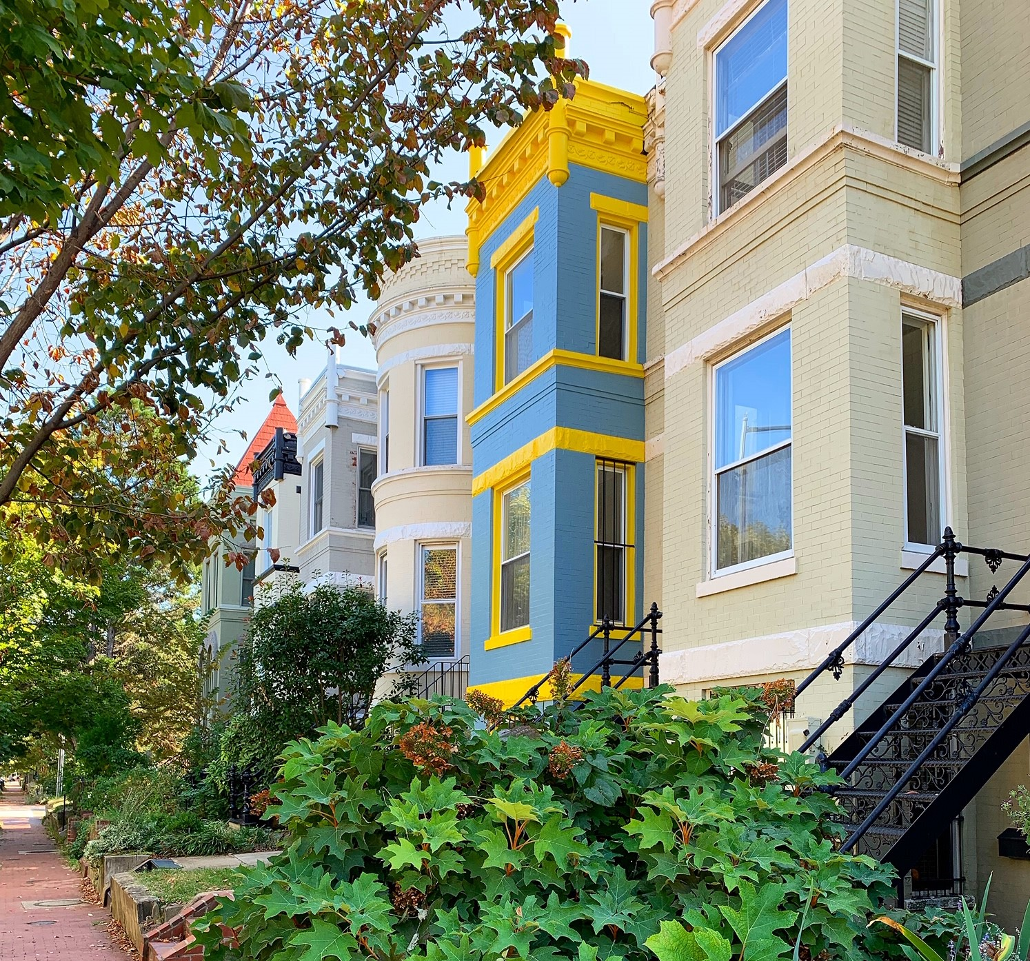 Washington, DC Historic Homes For Sale. Constitution Ave in Capitol Hill. Artyom Shmatko Luxury Real Estate Agent