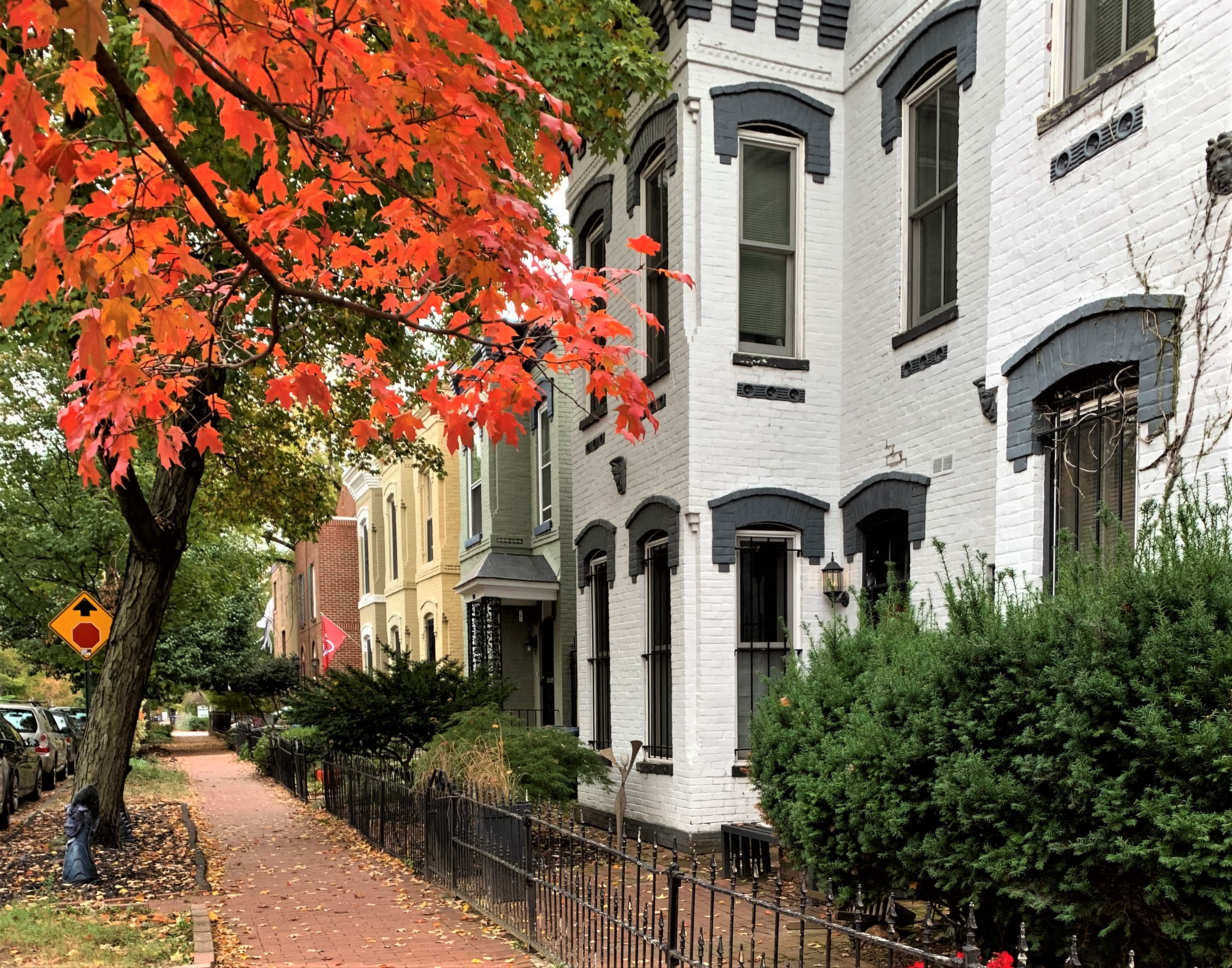 Washington, DC Row Homes For Sale. Capitol Hill.. Artyom Shmatko Realtor