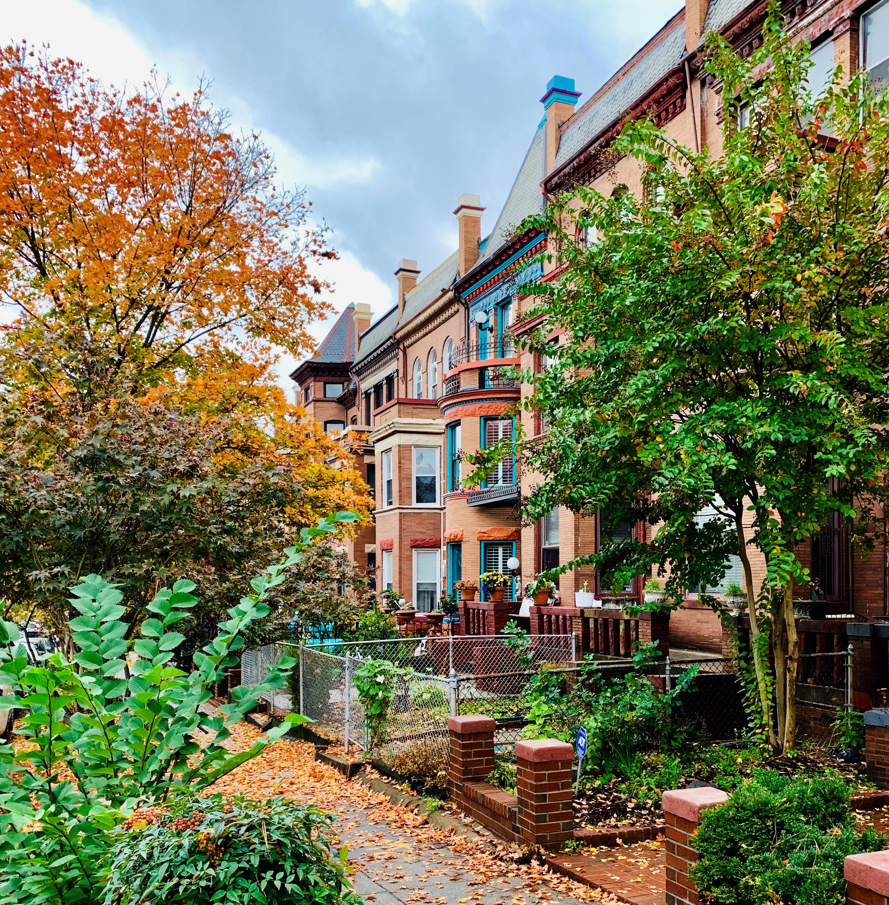 Washington, DC Semi Detached Homes For Sale. Bloomingdale. Artyom Shmatko Realtor