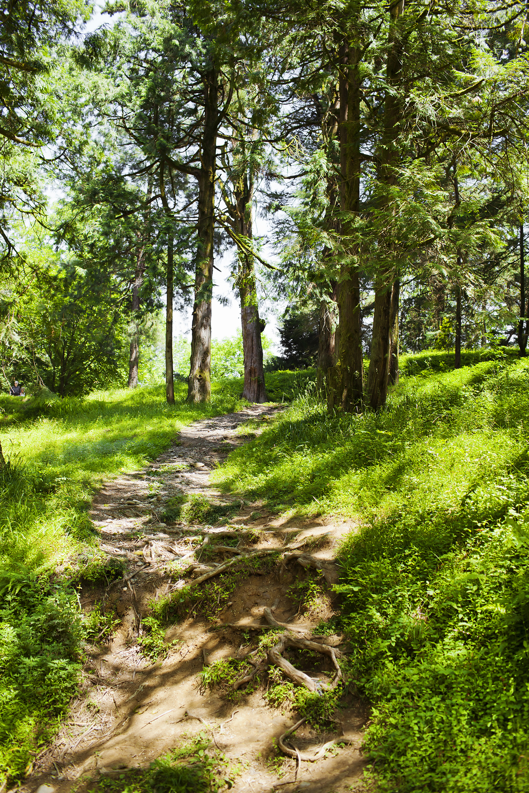 Buford home owners go hiking and biking.