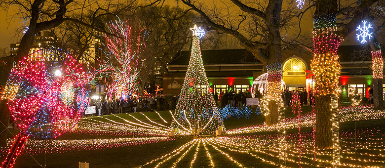 lincoln park zoo bursts into holiday splendor with lights and holiday festivities photos with santa ice carving musical light show shopping