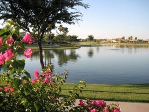 Sun Lakes lake