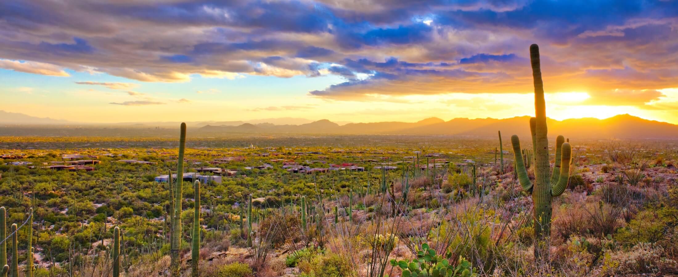 Mormon Lake Az >> Scottsdale Real Estate | Phoenix Real Estate