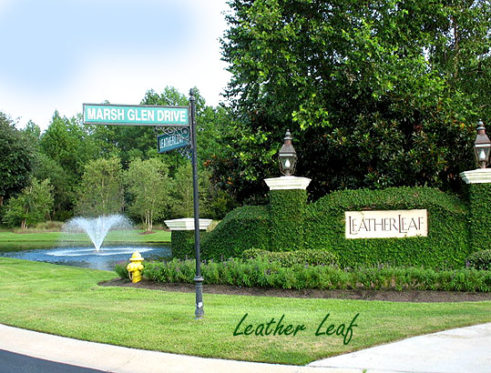Homes for Sale in Leather Leaf