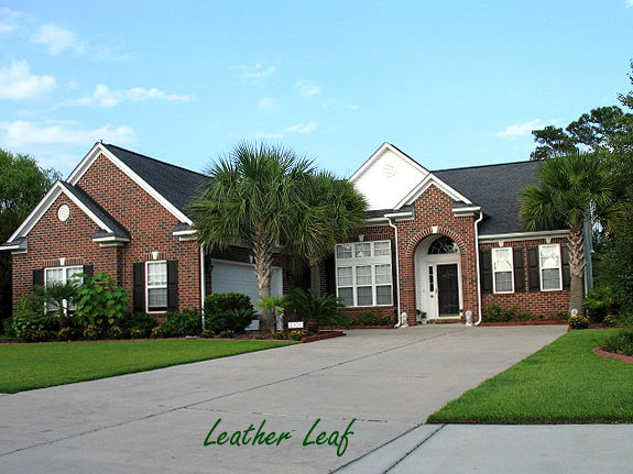 Leather Leaf Homes in Barefoot Resort