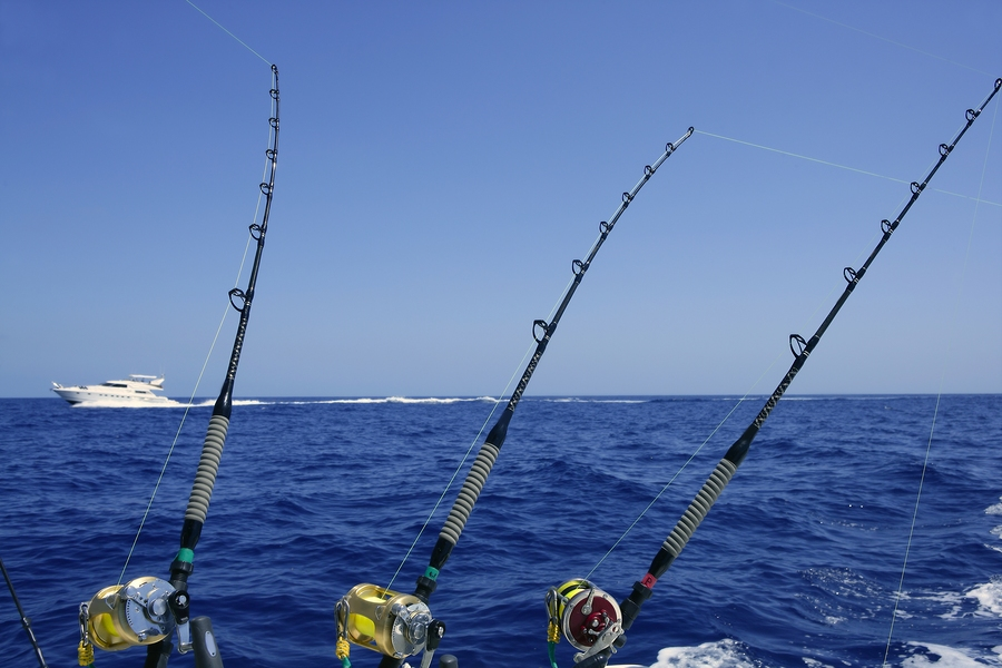 Search Indian Pass homes and find great fishing on Indian Pass real estate.