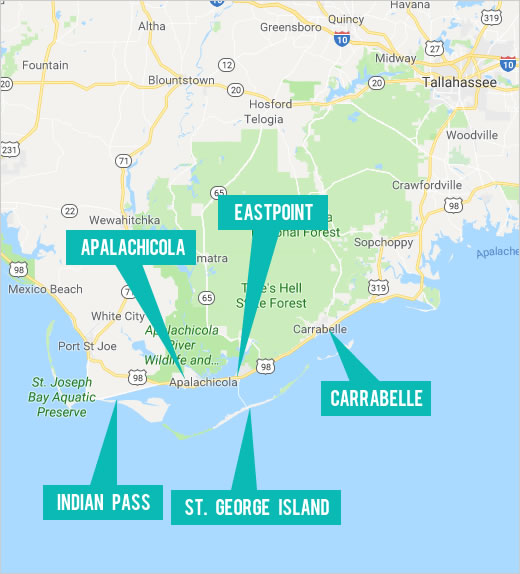 Explore St. George Island and Surrounding Area