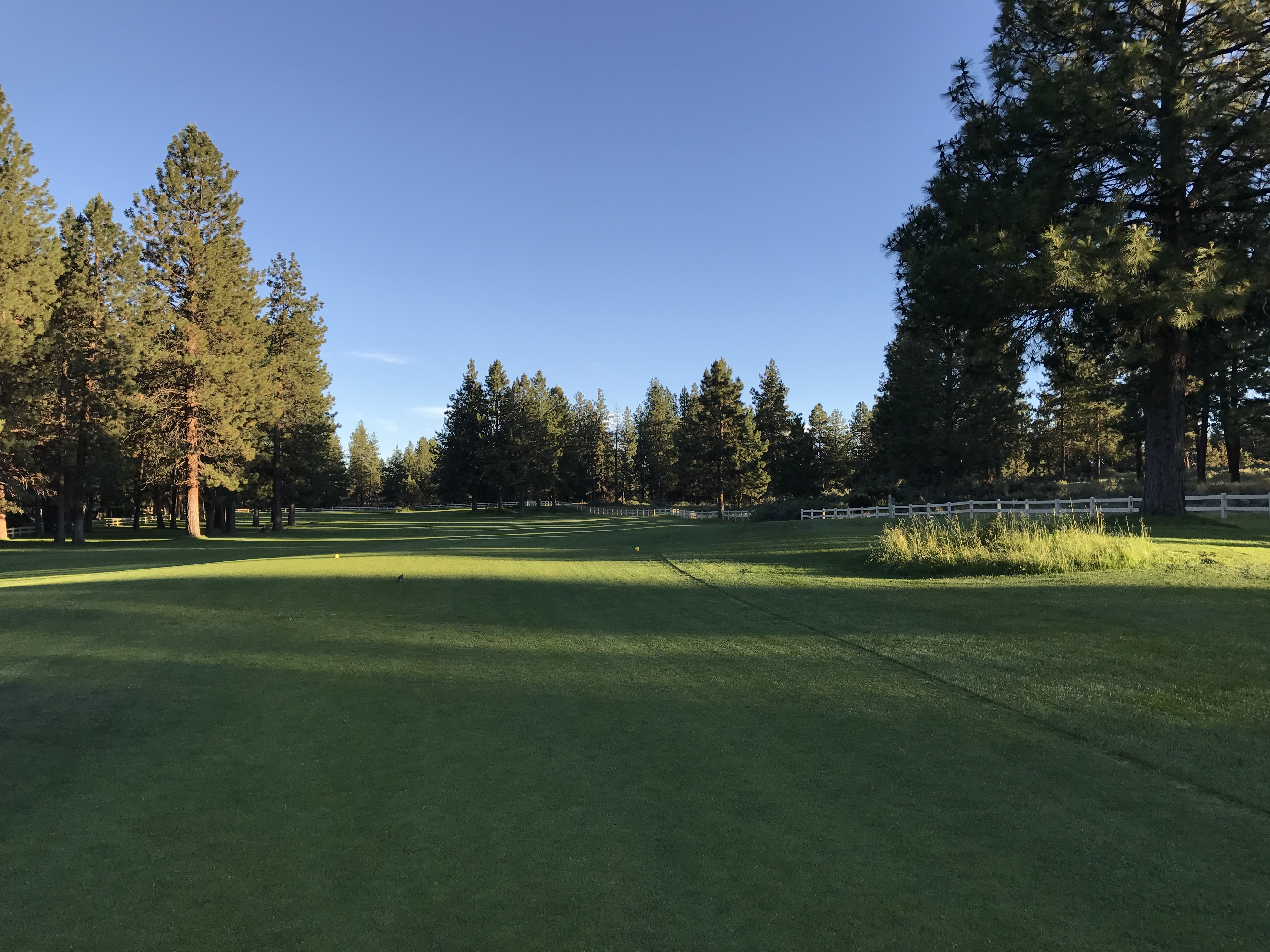 The Old Back Nine Golf Course at Mountain High