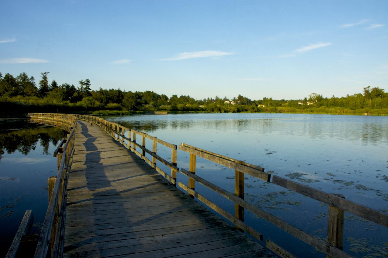 Swan Lake, Saanich BC