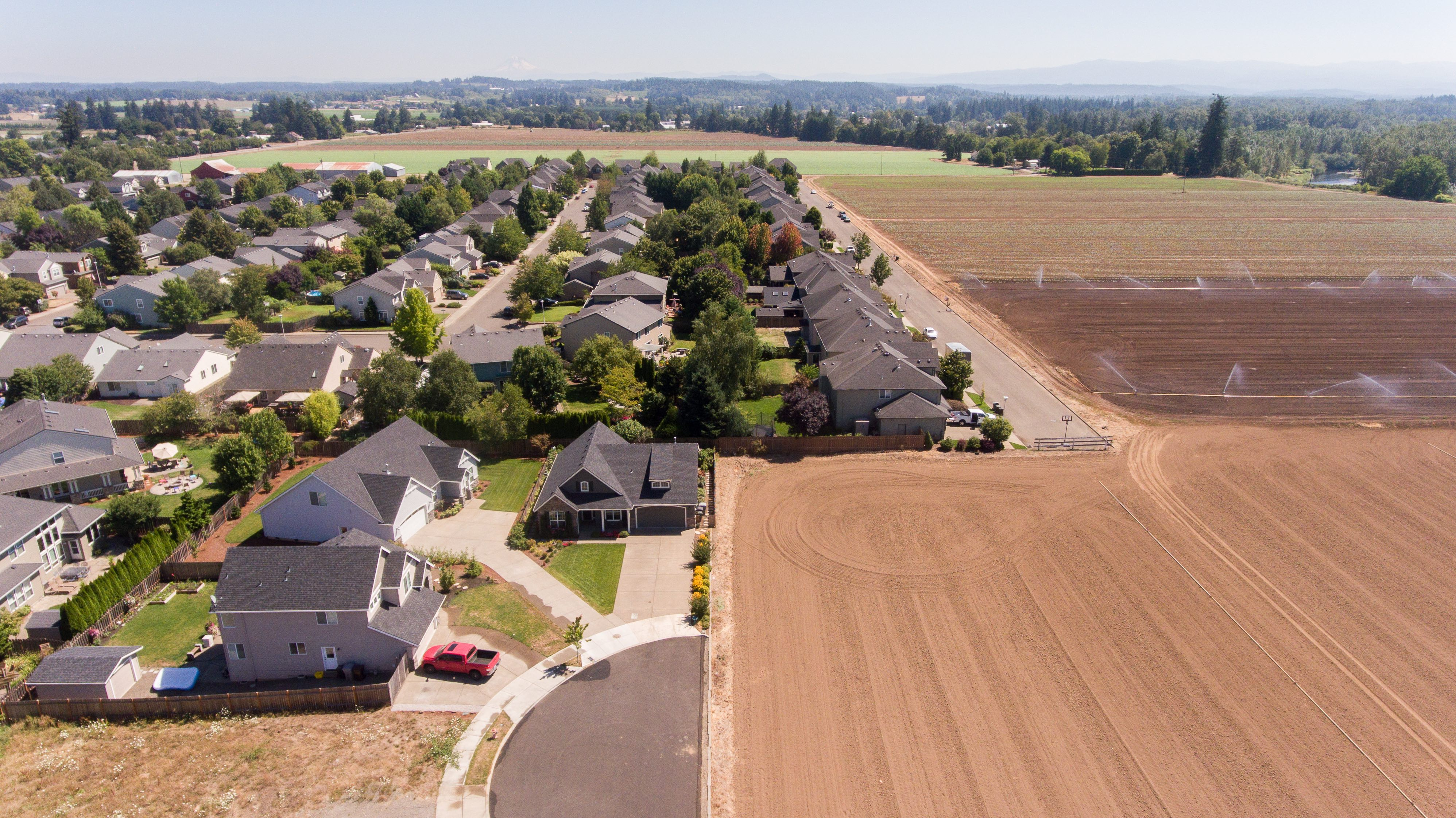 Canby, OR Residential Neighborhood of Homes