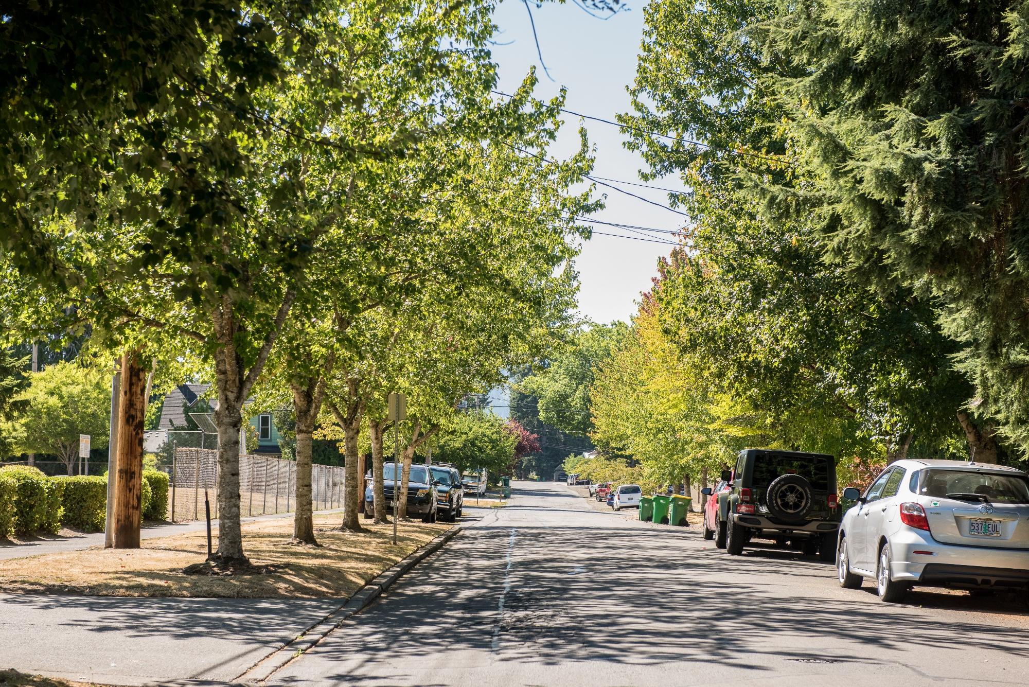 Forest Grove neighborhood street