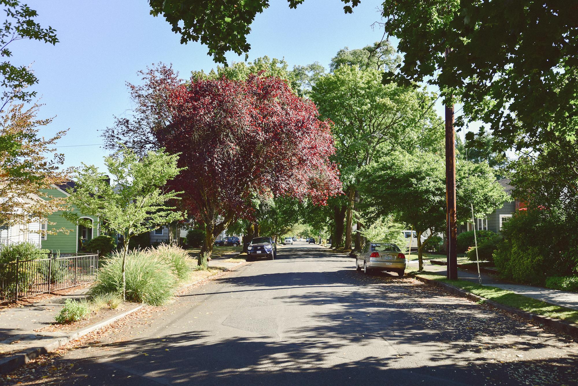 Sellwood neighborhood homes
