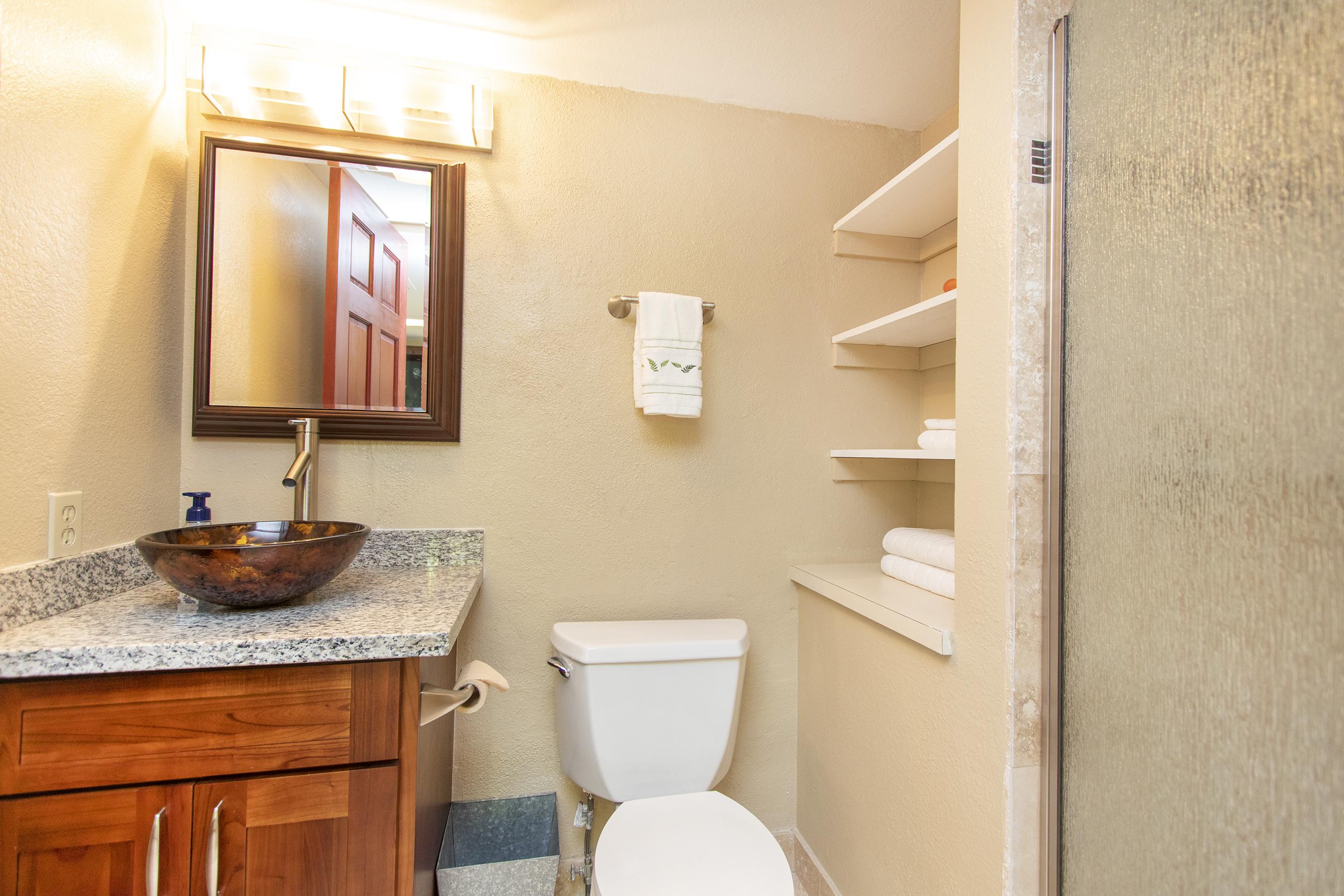 Downstairs bathroom at 3663 Woodlawn Drive