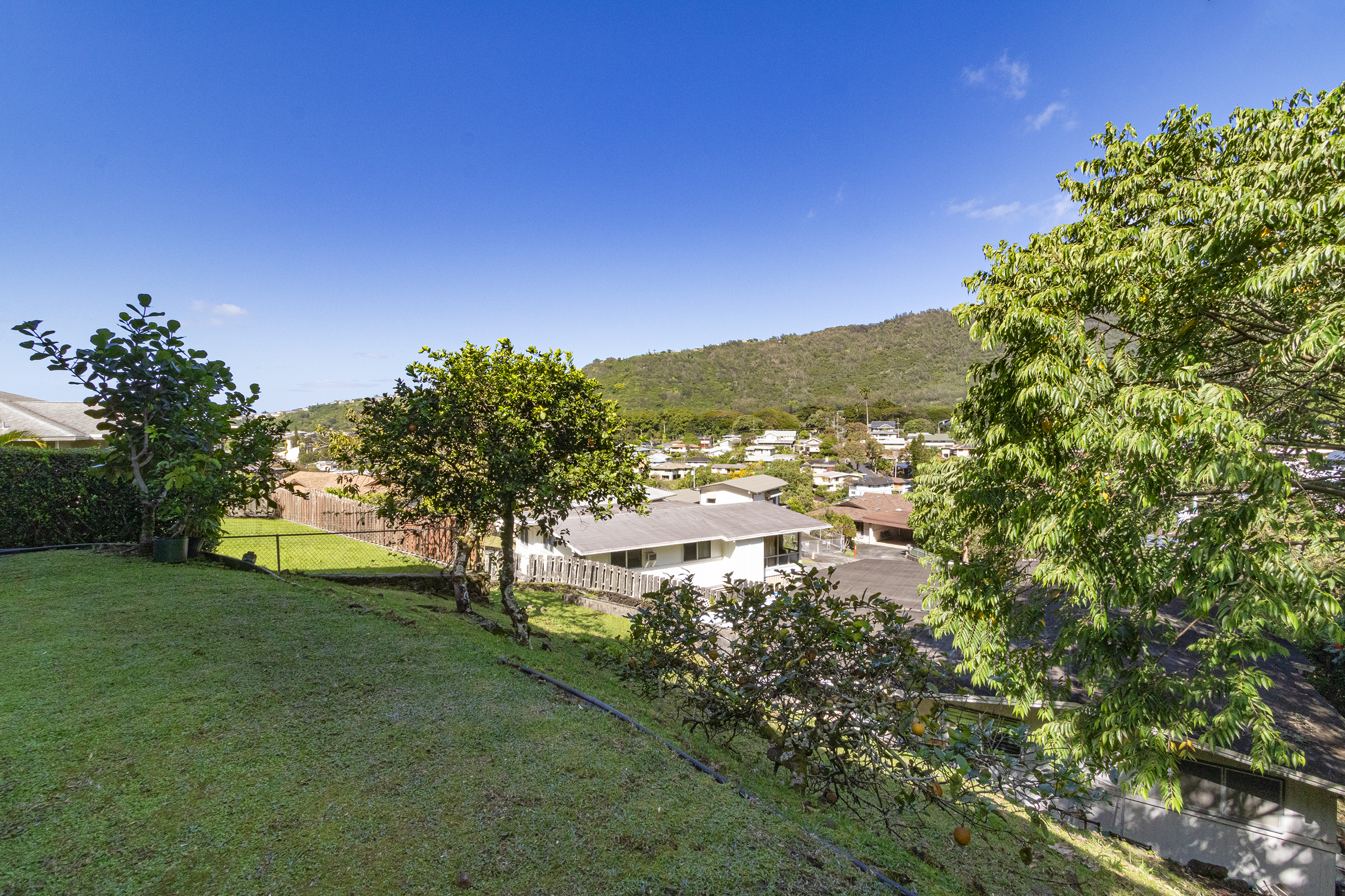 Backyard area at 380 Puiwa Road, Honolulu, HI 96817
