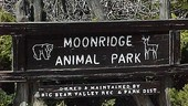 Moonridge Animal Park Zoo
