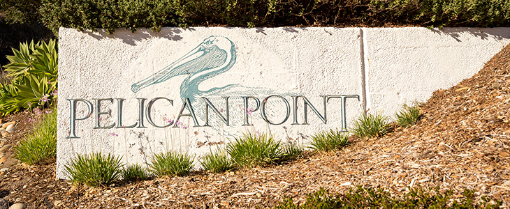 Pelican Point