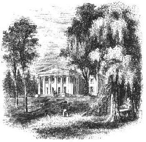 Nevis_Estate_Sketch.jpg