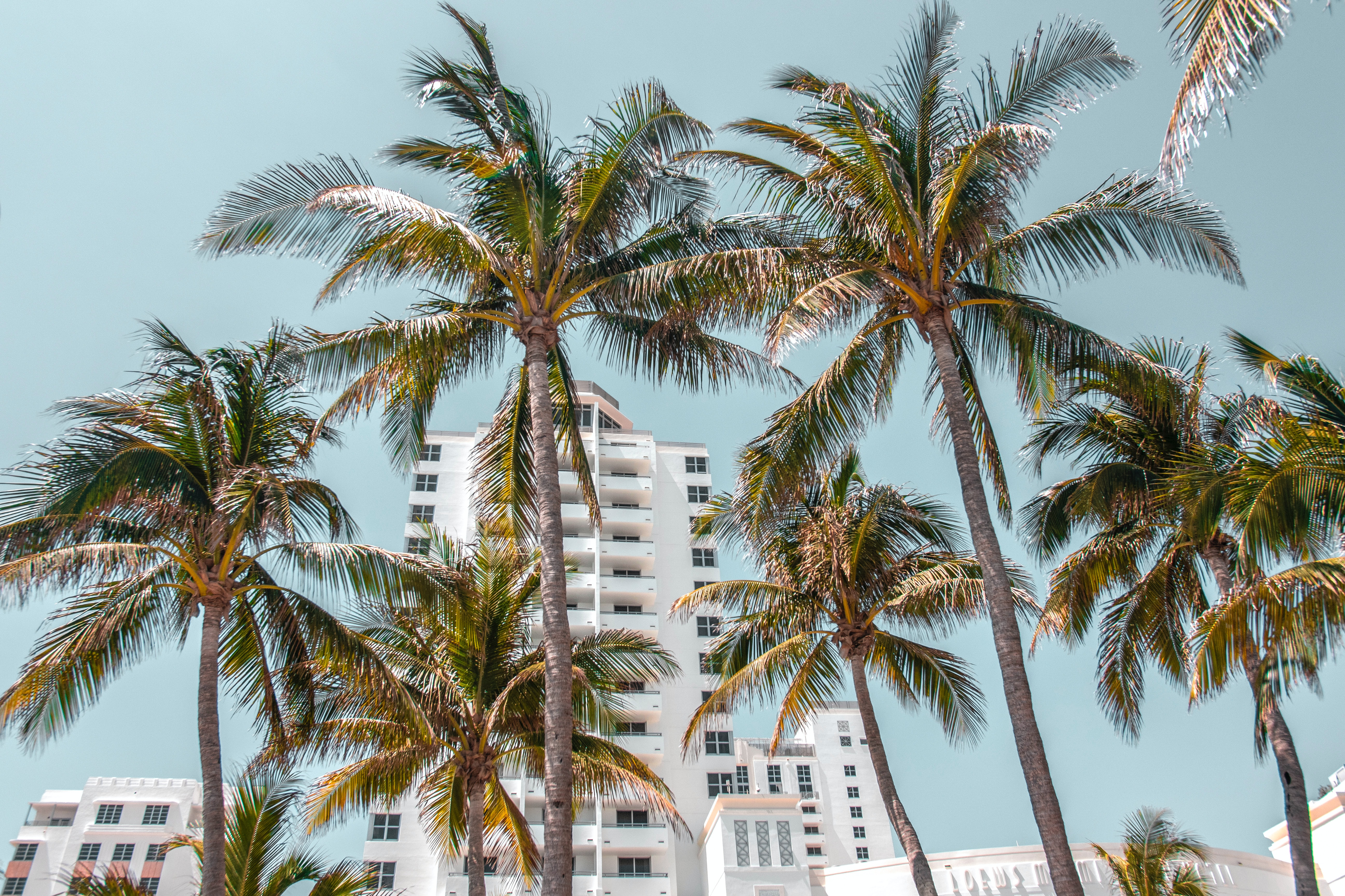 Bryan is skilled in determining the appropriate listing price for Fort Lauderdale homes for sale.