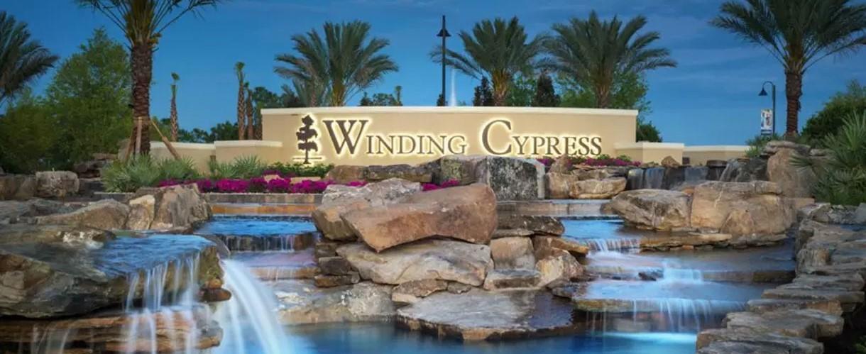 Winding Cypress