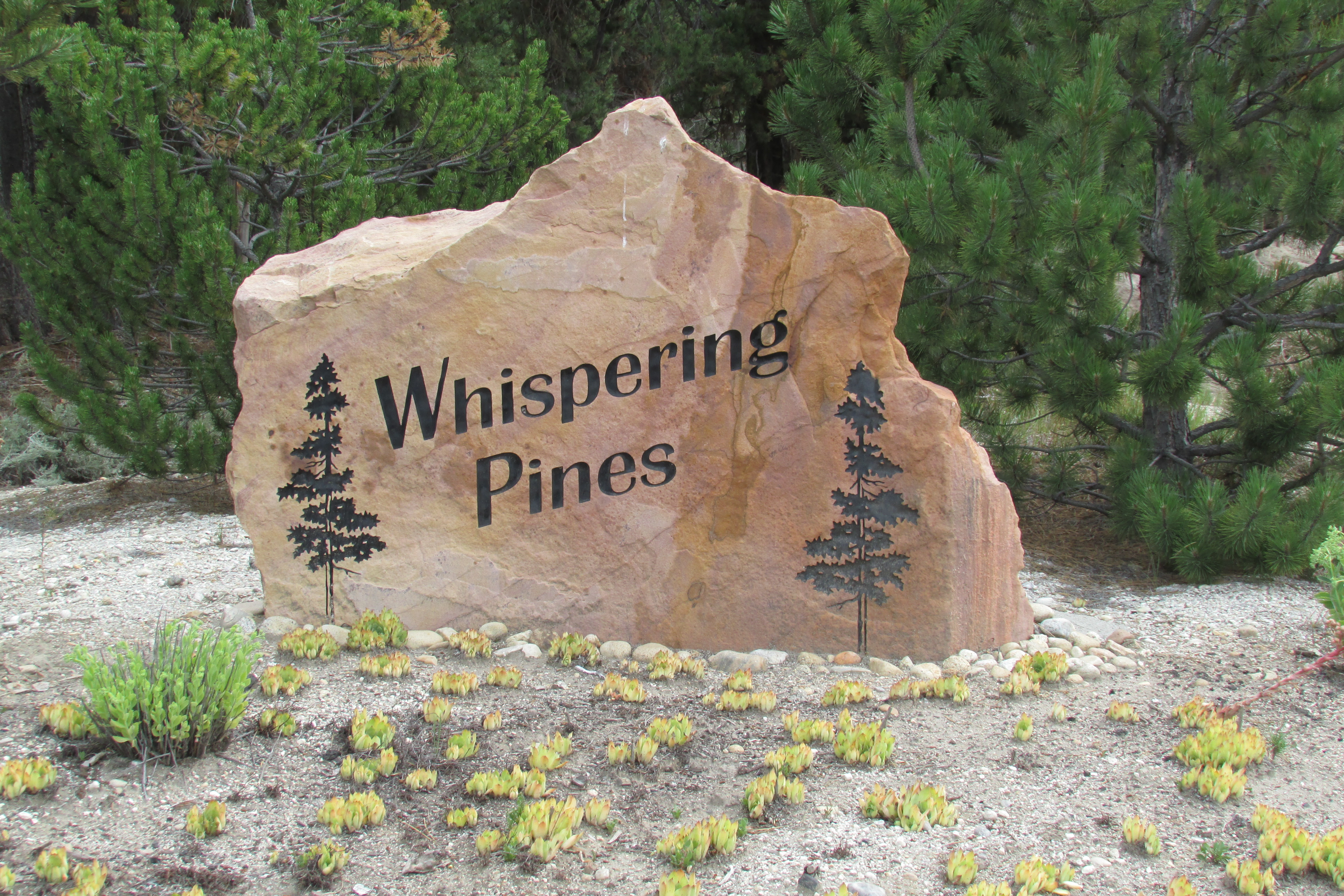 Whispering Pines 2.7 Acres