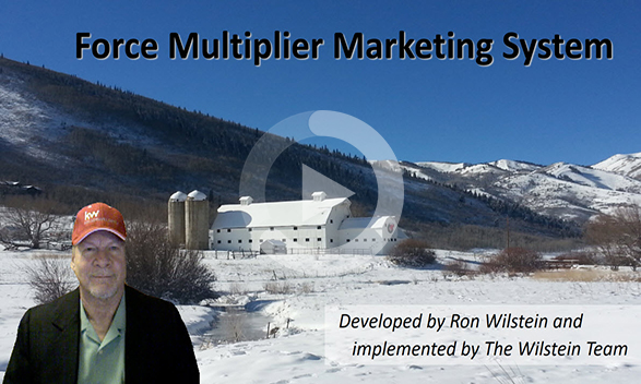force multiplier marketing