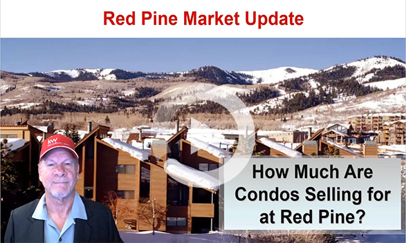 Red Pine Real Estate Market Update