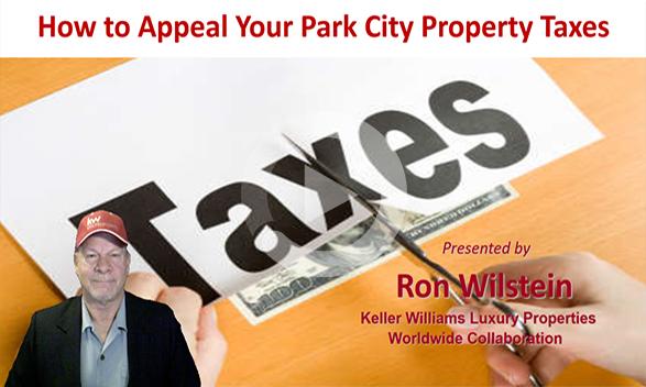 2018 Tax Appeal Webinar