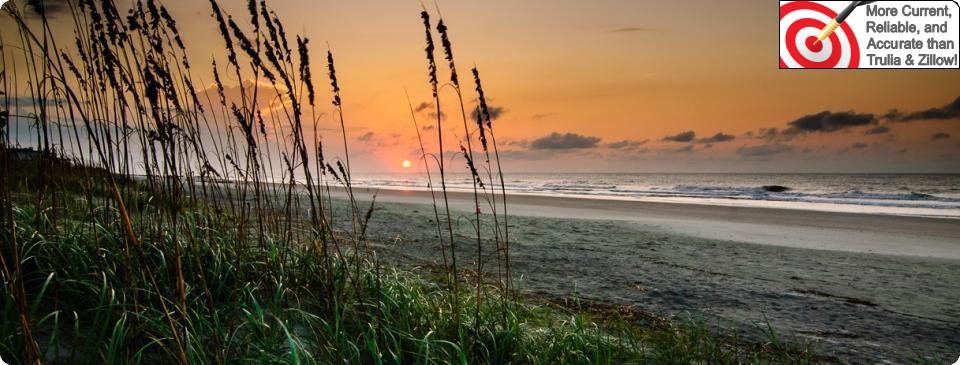 Charleston Island South Carolina Real Estate Picture