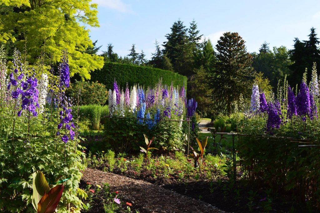 May Long Weekend Botanical Garden