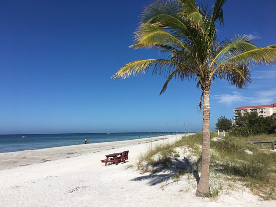 Beach at Indian Shores Florida Image