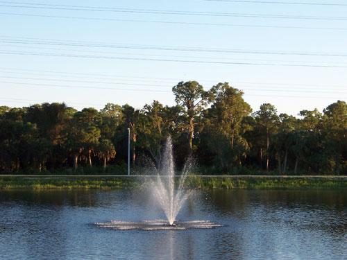 Oldsmar Florida Parks image