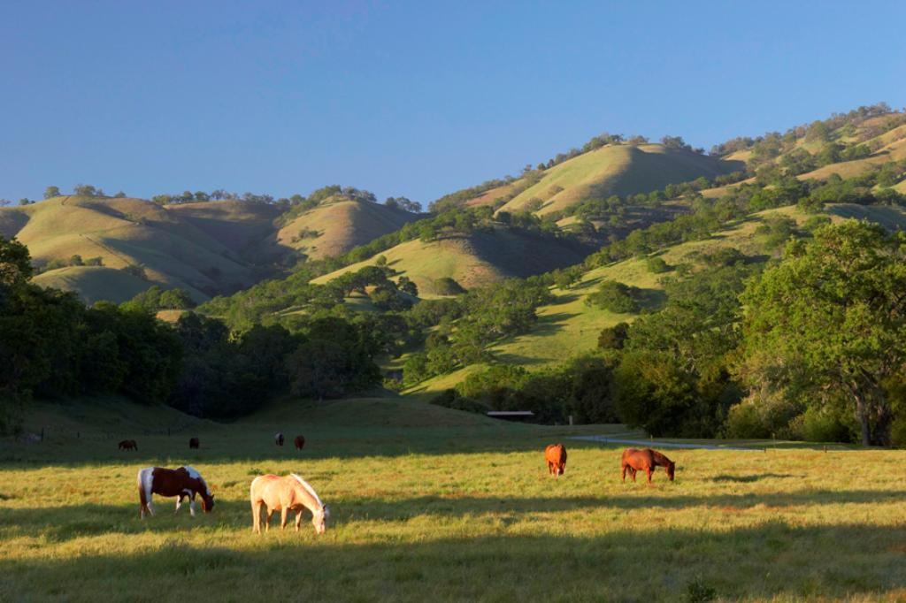 Living in carmel which area suits you the best for Best rural places to live in california