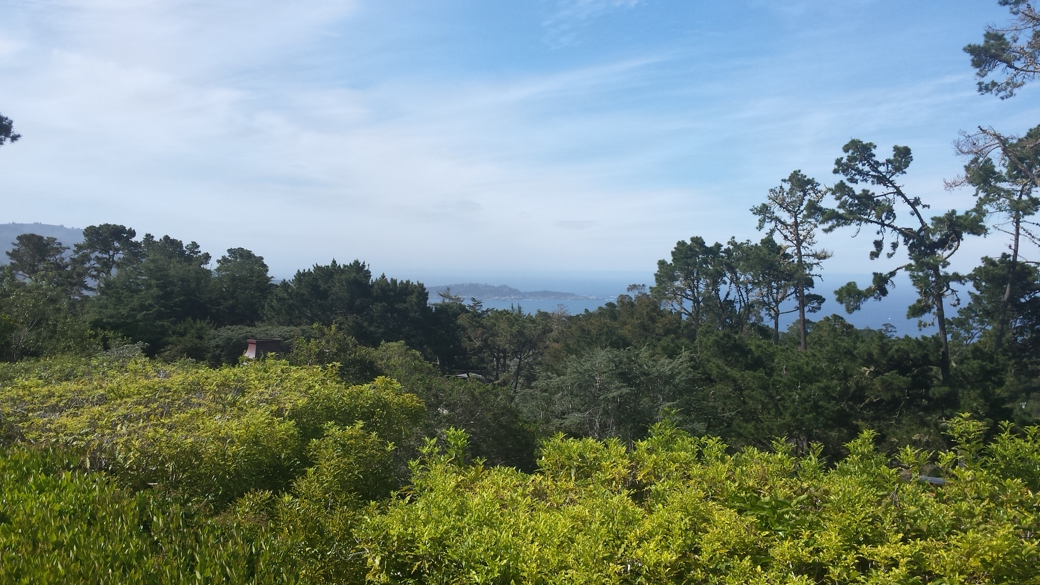 carmel point lobos in the distance