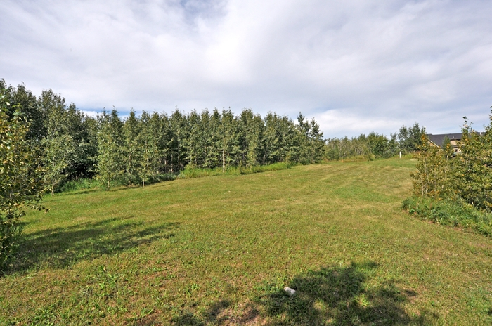 Search Bearspaw/Rockyview real estate for sale