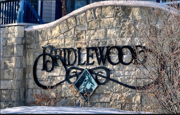 Search Bridlewood real estate for sale