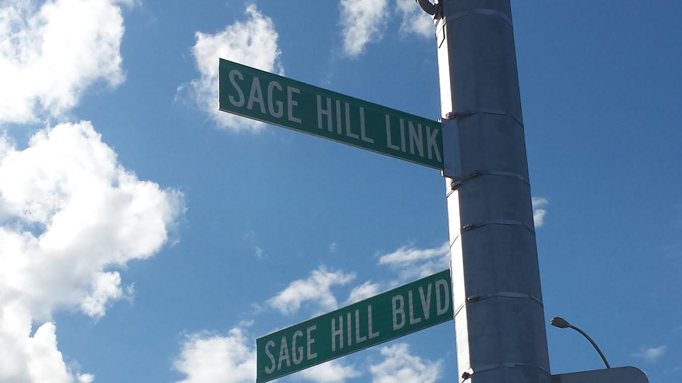 Search Sage Hill real estate for sale